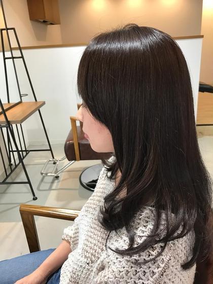カラー 栗色アッシュ☆