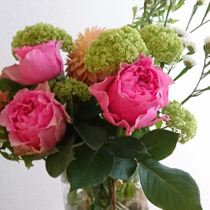 お花に癒されたい方にも🌹