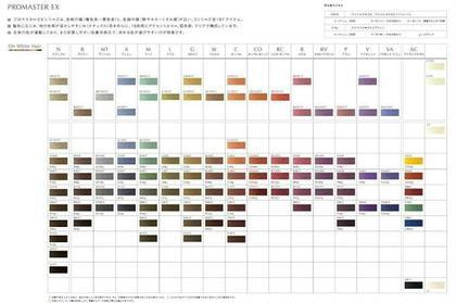 プロマスターEXのカラーチャートです。 色相をバランスよくそろえ、計算通りの発色します。 長年使用していますが、新しいカラー登場のため、補色で使う程度になってきました。 クレイジーダイアモンド所属・加藤正徳のスタイル
