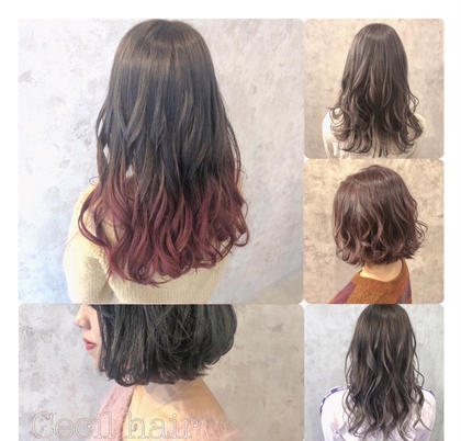 Cecilhair所属のセシルヘアーツチヤ
