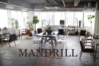 mandrill所属の-- Ako--