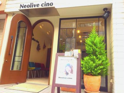 Neolive cino所属の菊池大一