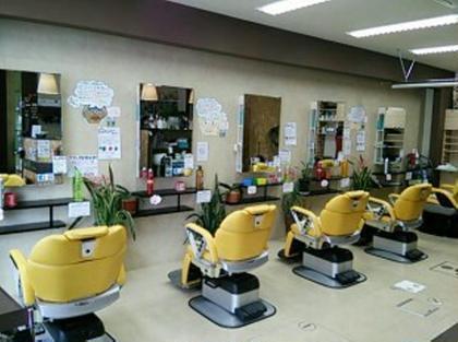 hair art prime所属の塩崎信也