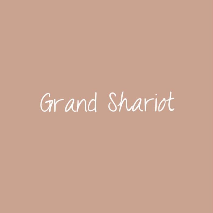 GrandShariot所属・前田 亜紀の掲載