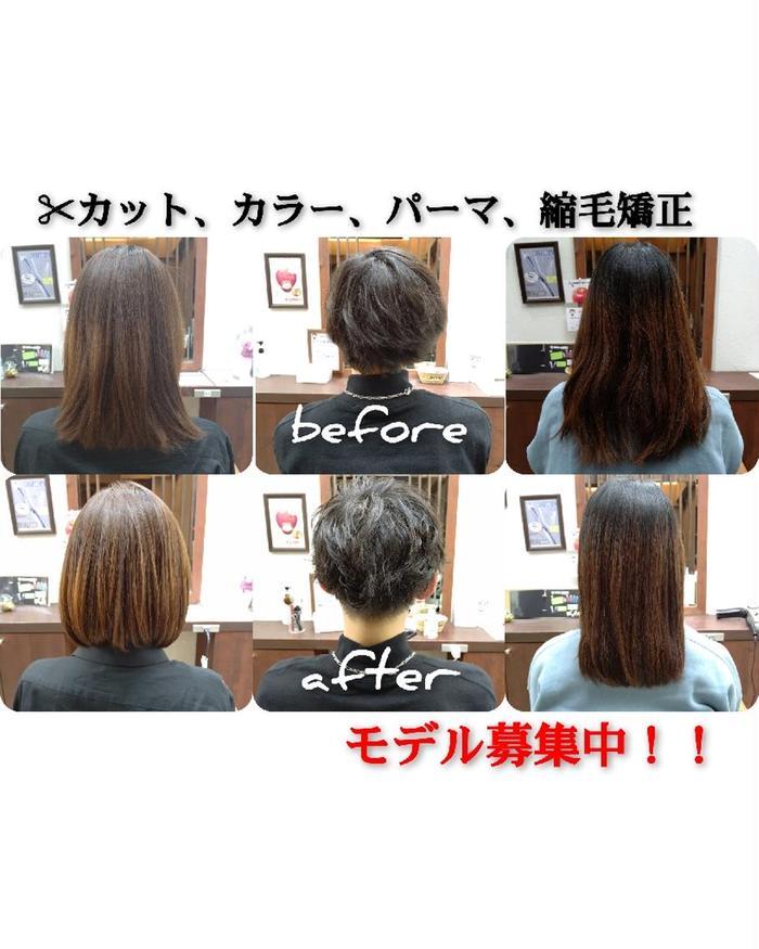TOTOSA Coming所属・【カラーモデル募集】 高木悠多の掲載