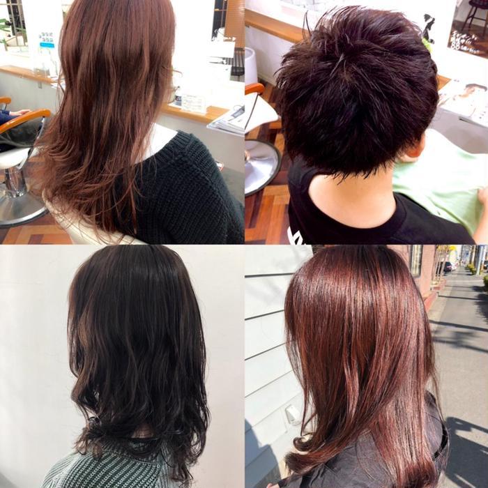 hair & make up möpa所属・佐藤 悠生の掲載